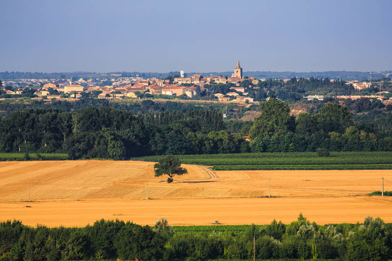 Castelnau de Guers , village où se situe le  Domaine de Castelnau